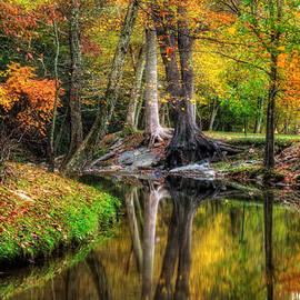 Greg Mimbs - Butternut Creek in Fall