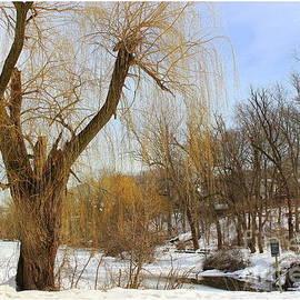 Winter By The Frozen Lake by Dora Sofia Caputo