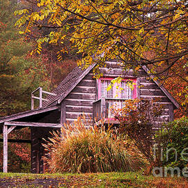 Olahs Photography - Cabin in the Woods
