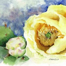 Cactus in Bloom by Maria Hunt