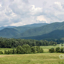 Cades Cove In Summer by Todd Blanchard