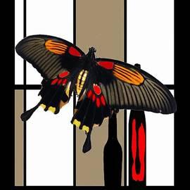 Cafe Butterfly by Kelly Schutz
