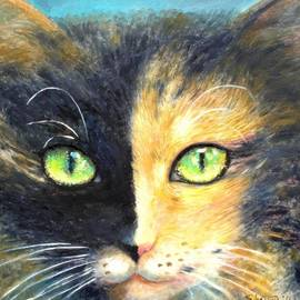 Calico Cat by Shijun Munns