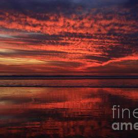 Cardiff Afterglow  by John F Tsumas
