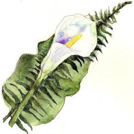 Blenda Studio - Calla Lily Flower Art