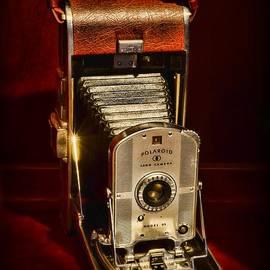 Camera - Vintage Polaroid Land Camera Model 95 by Paul Ward