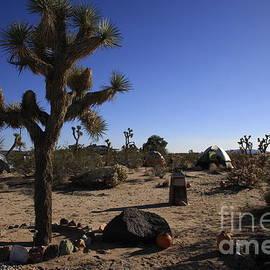 Nina Prommer - Camping in the desert