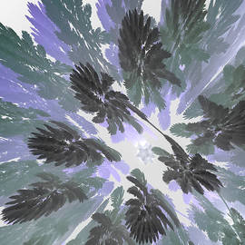 First Star Art - Daytime Jungle Sky by jammer