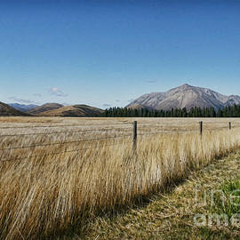 Chris Warring - Canterbury High Country view from the road