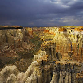 Peter Coskun - Canyon of Color