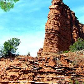 Linda Cox - Caprock Canyon Red