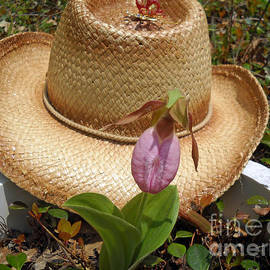 Timothy Connard - Captive Pink Ladyslipper