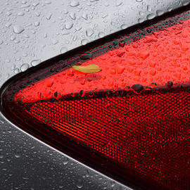 Car After Rain by Dragan Kudjerski