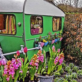 Elvis Vaughn - Caravan Garden