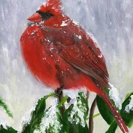 Deborah Butts - Cardinal in Winter