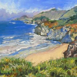 Dominique Amendola - Carmel coast