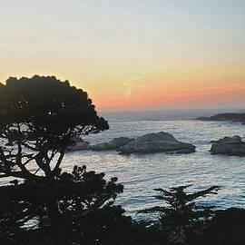 Carmel's Scenic Beauty by Kristina Deane
