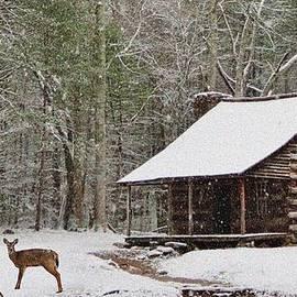 Golder Photography - Carter Shields Cabin in Winter