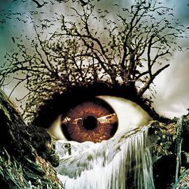 Marian Voicu - Cascade Crying Eye