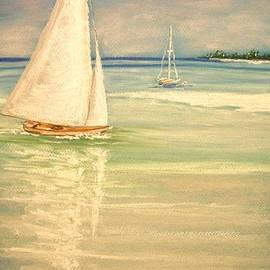 The Beach  Dreamer - Castaway