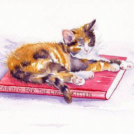 Debra Hall - Cat-a-tonic