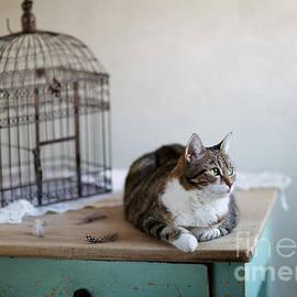 Nailia Schwarz - Cat and Bird Cage
