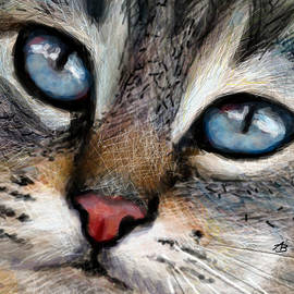 CAT blue eyes  by Angie Braun