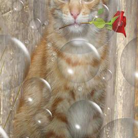 Jo Collins - Cat with bubbles