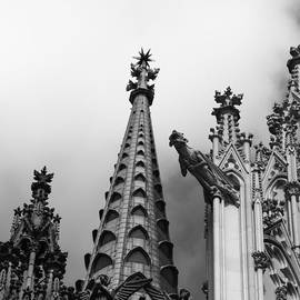 Teresa Mucha - Cathedral Gargoyle 06