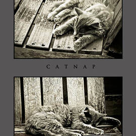 Greg Jackson - Catnap