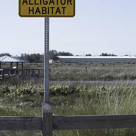 Caution Alligator Habitat by Susan Molnar