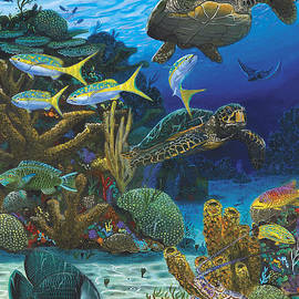 Cayman Turtles Re0010 by Carey Chen