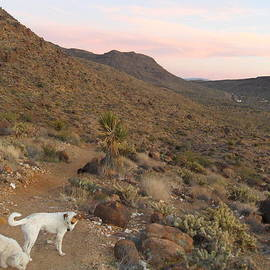 James Welch - CEASER, MOCHA, and CHICO IN THE CERBAT MOUNTAINS