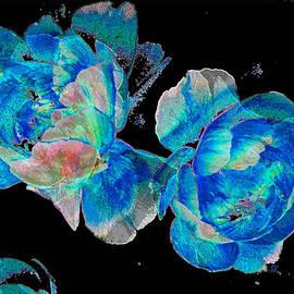 Stephanie Grant - Celestial Blooms