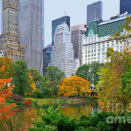 Regina Geoghan - Central Park and Fifth Autumn View