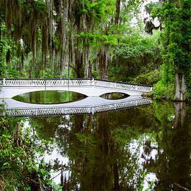 Charleston Sc Bridge by John Johnson