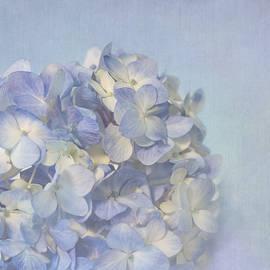 Kim Hojnacki - Charming Blue
