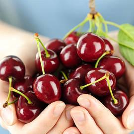 Cherries by Elena Elisseeva