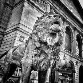 Lion Statue at Art Institute of Chicago