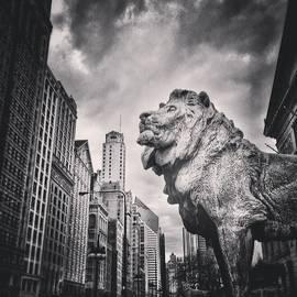 Art Institute of Chicago Lion Picture