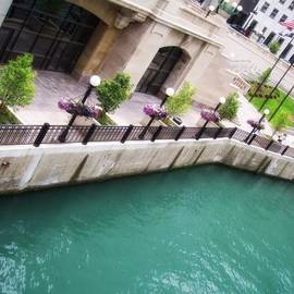 Chicago River by Donna Blackhall