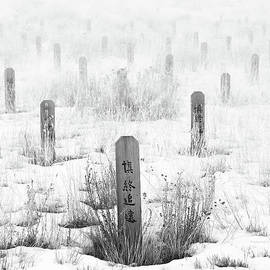 Theresa Tahara - Chinese Grave Markers
