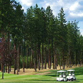 Nancy Harrison - Christina Lake Golf Club