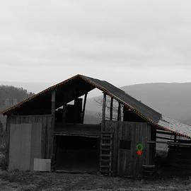 Christmas barn by Mary Halpin