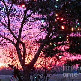 Tina M Wenger - Christmas Light Sunrise