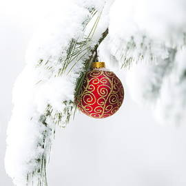 Christmas Snow by Diane Diederich
