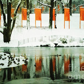 Nishanth Gopinathan - Christo - The Gates - Project for Central Park reflection in wat