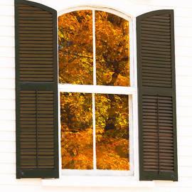 Alan L Graham - Church Window Foliage