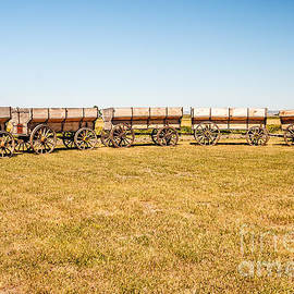 Circle The Wagons by Sue Smith