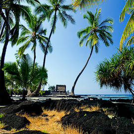 Nature  Photographer - City of Refuge - A view of a Hawaiian traditional house